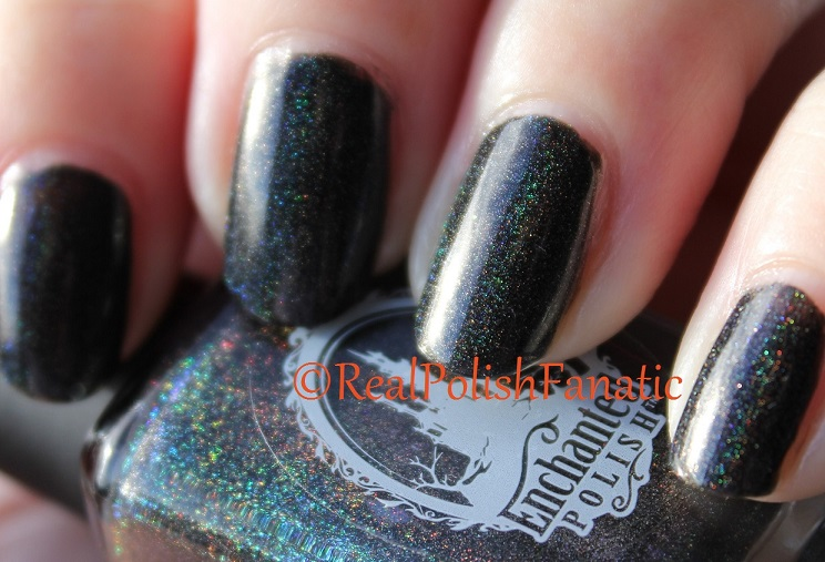 10-30-2015 Enchanted Polish - October 2015 (6)