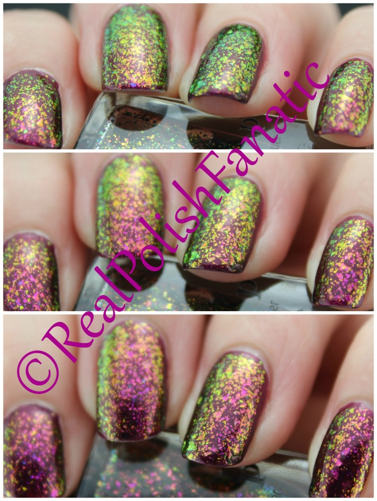 03-23-2016 ILNP - Electric Carnival & Sally Hansen - Save The Date