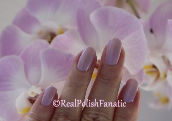 Barry M - Heather