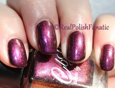 Sally Hansen - Get Down & Colors by Llarowe - Fall In Love With Chicago