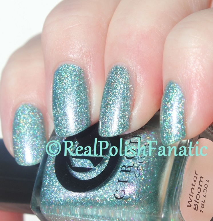 Cirque Colors – Winter Bloom // Holiday 2016 – RealPolishFanatic