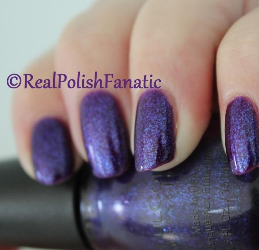 11-06-2016 Sinful Colors Decem-brrr