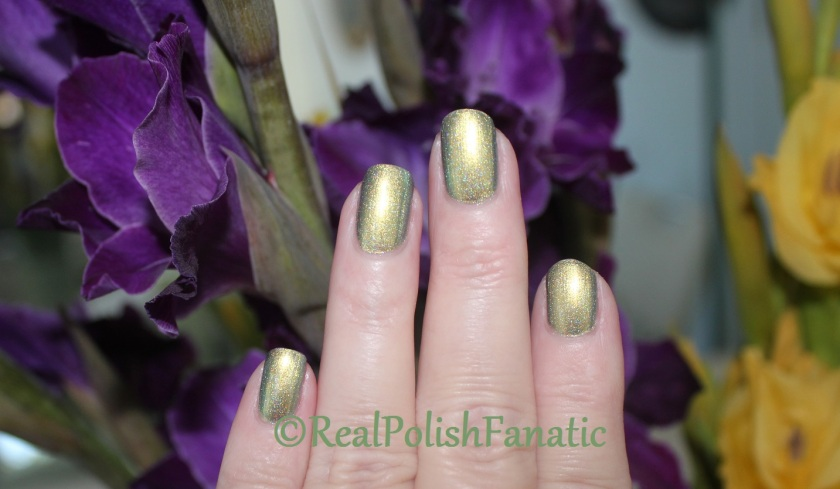 05-21-2017 Tonic Polish Promise Of Spring (43)
