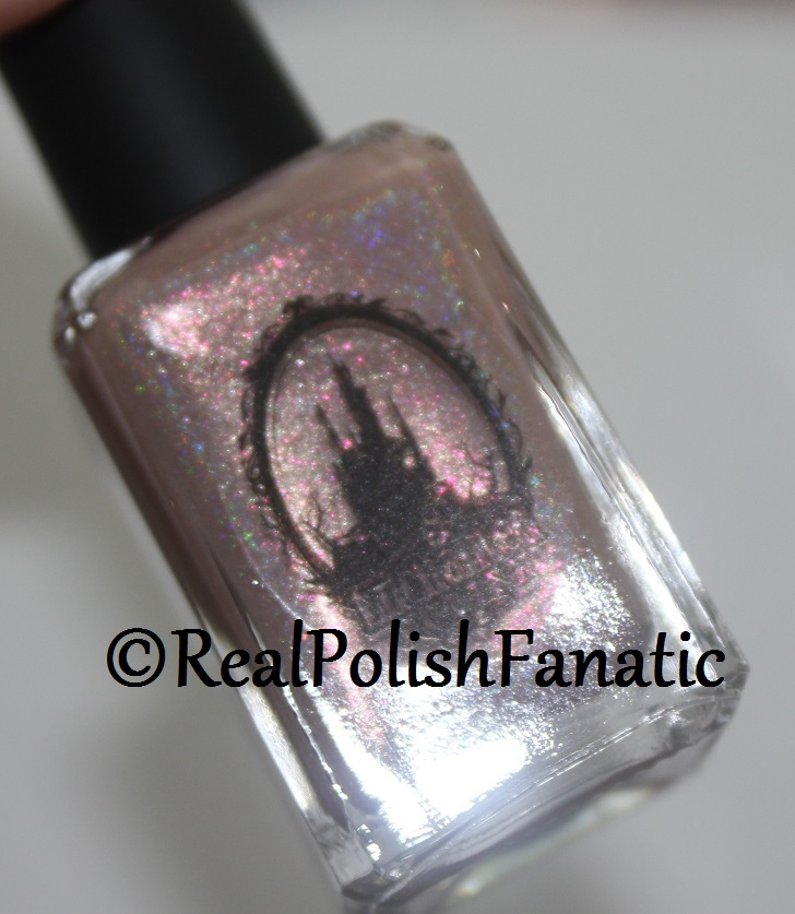 Enchanted Polish Monthly Mystery - June 2017 (3)