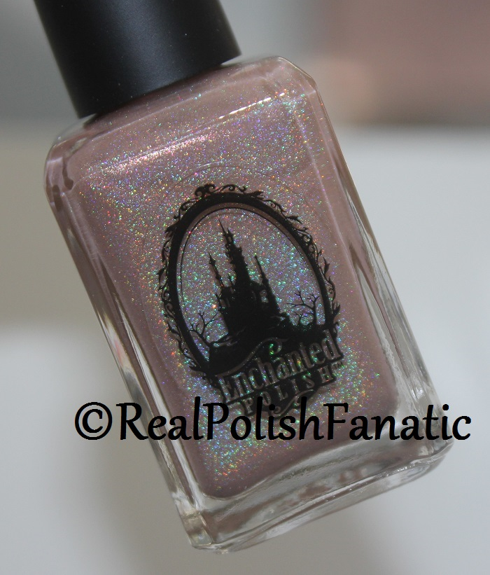 Enchanted Polish Monthly Mystery - June 2017 (4)