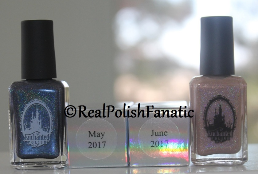 Enchanted Polish Monthly Mystery - May 2017 & June 2017 (7)