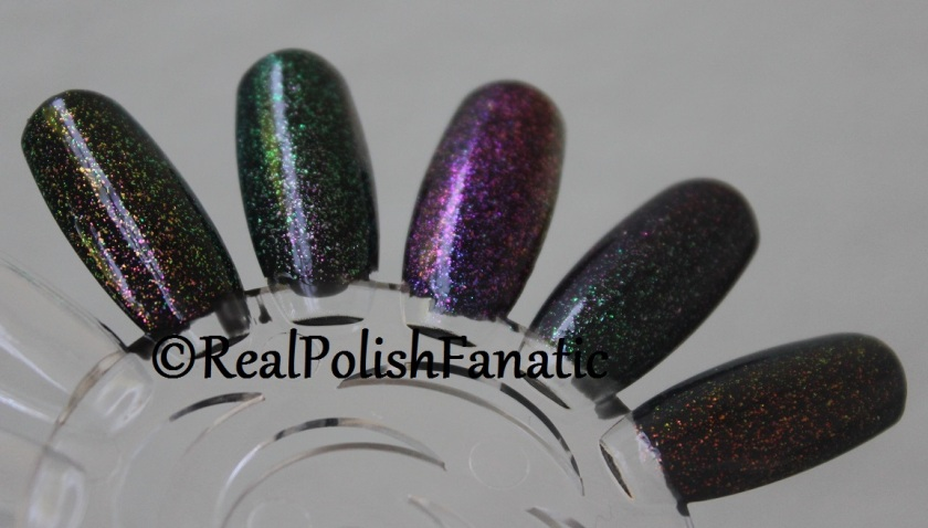 ILNP Real Magic™ Toppers - My Picks -- Limitless, Mile High, Moonstone, Renegade, The Alchemist (11)