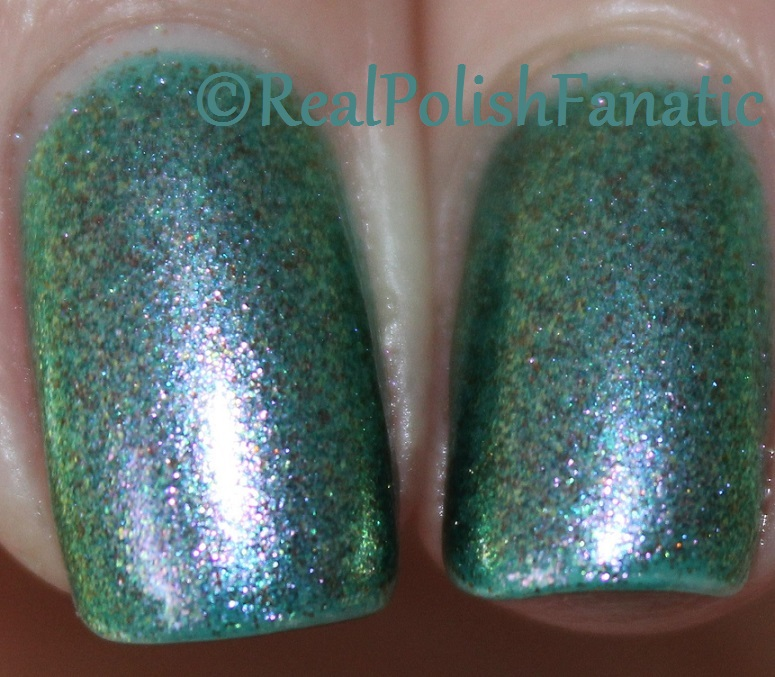 Blackheart Beauty - Scale Shimmer (5)