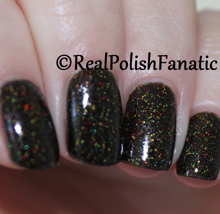 Geekish Glitter Lacquer - It's My Right To Replace Him -- Batman's Robins Collection October 2017 (3)