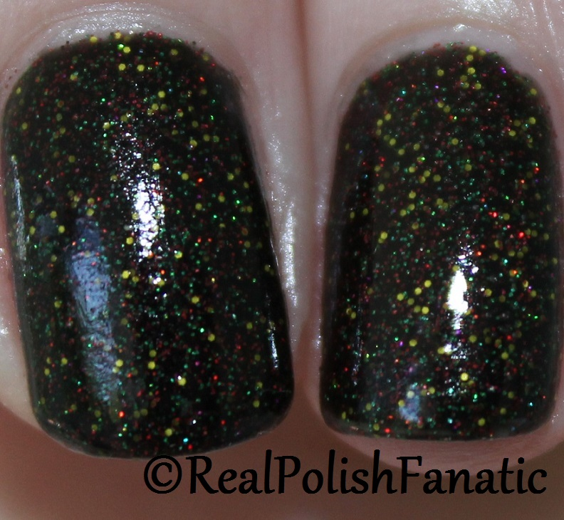 Geekish Glitter Lacquer - It's My Right To Replace Him -- Batman's Robins Collection October 2017 (8)