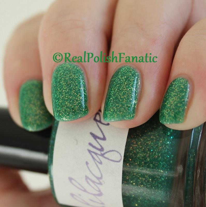 Lilacquer - Lá Fhéile Pádraig (19)