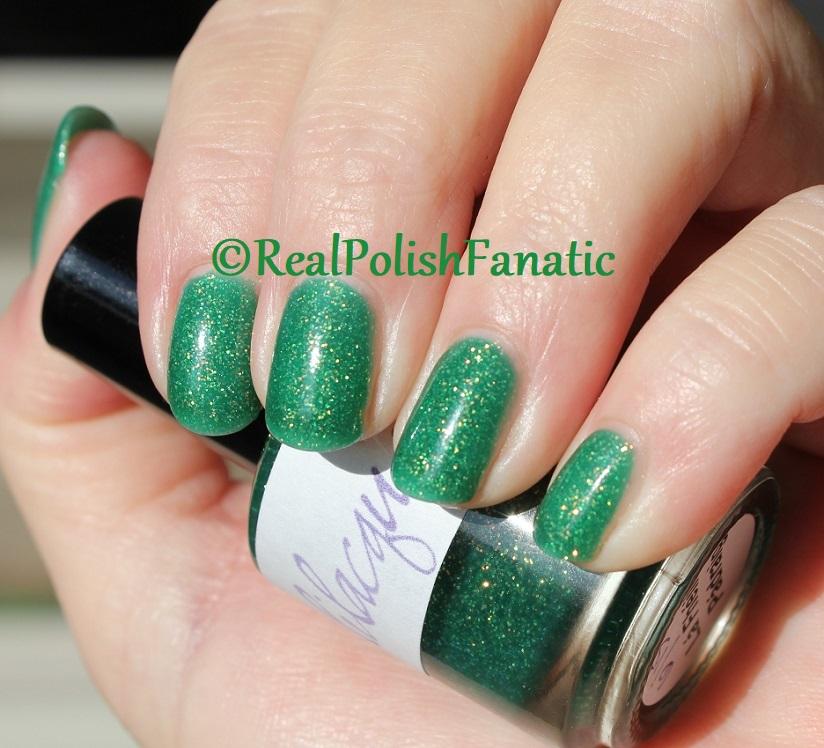Lilacquer - Lá Fhéile Pádraig (36)