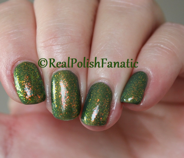 Bees Knees Lacquer Malacath and Kleancolor Chunky Holo Clover (14)