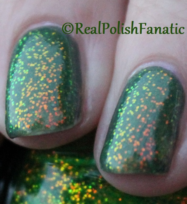 Bees Knees Lacquer Malacath and Kleancolor Chunky Holo Clover (21)