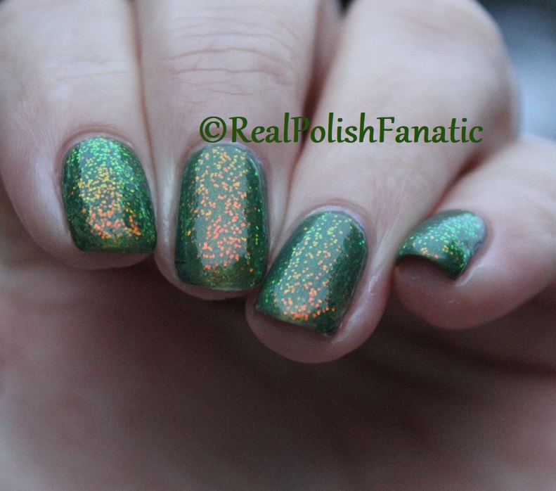 Bees Knees Lacquer Malacath and Kleancolor Chunky Holo Clover (25)
