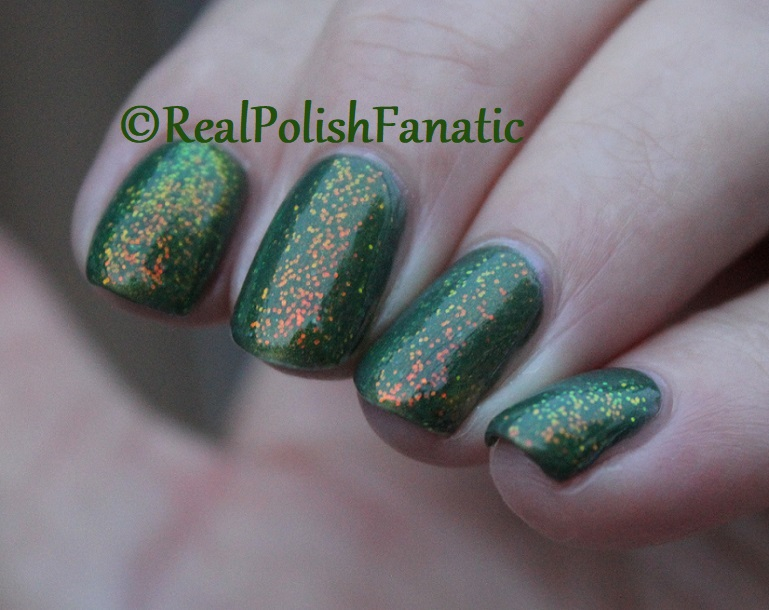 Bees Knees Lacquer Malacath and Kleancolor Chunky Holo Clover (26)