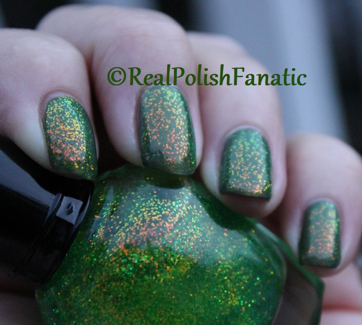 Bees Knees Lacquer Malacath and Kleancolor Chunky Holo Clover (28)