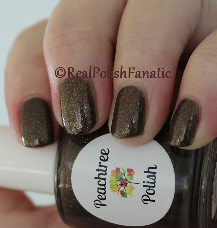 Peachtree Polish - Choc-o-mint -- February 2018 Polish Pickup (10)
