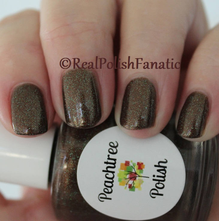 Peachtree Polish - Choc-o-mint -- February 2018 Polish Pickup (11)
