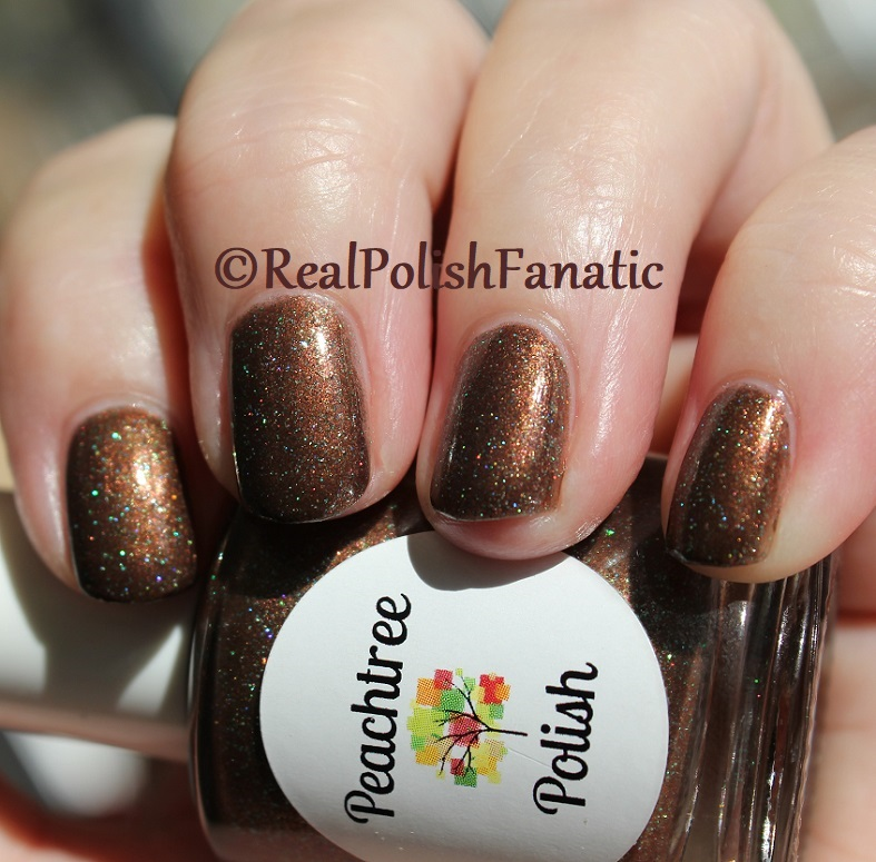 Peachtree Polish - Choc-o-mint -- February 2018 Polish Pickup (16)