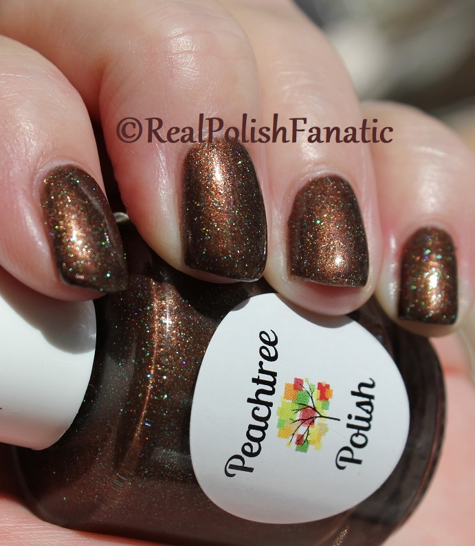 Peachtree Polish - Choc-o-mint -- February 2018 Polish Pickup (17)