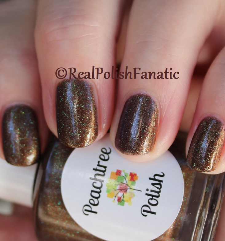 Peachtree Polish - Choc-o-mint -- February 2018 Polish Pickup (20)