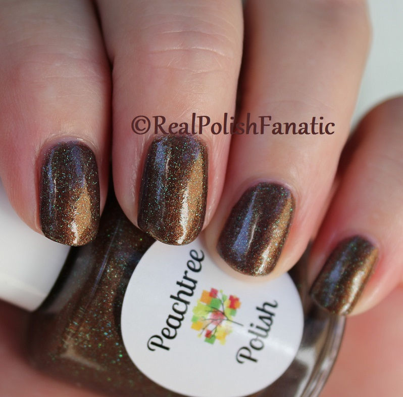 Peachtree Polish - Choc-o-mint -- February 2018 Polish Pickup (21)