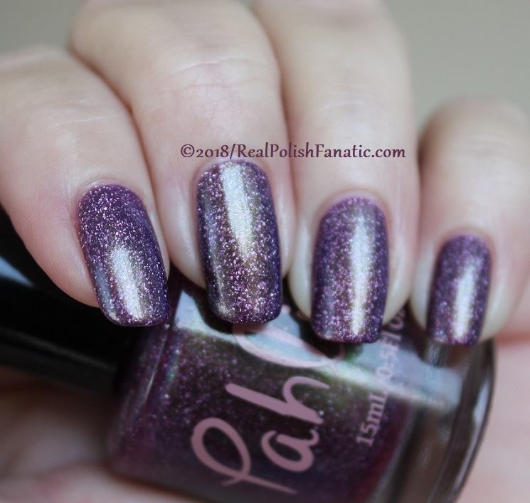 Pahlish - Tempest Shadow (13)