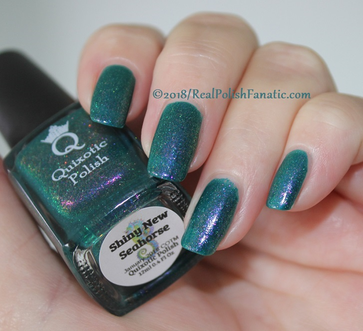 Quixotic Polish - Shiny New Seahorse -- COTM January 2018 (6)