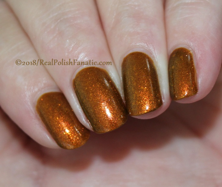 Geekish Glitter Lacquer - The Lion -- Zodiac Series Leo - July 2018 (11)