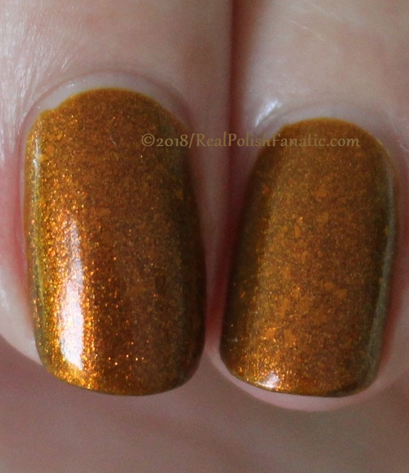 Geekish Glitter Lacquer - The Lion -- Zodiac Series Leo - July 2018 (28)
