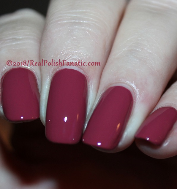 The Nail Bazaar - Cosmic Cranberry (11)