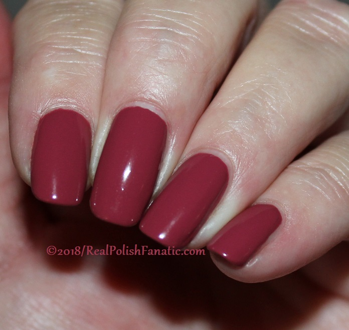 The Nail Bazaar - Cosmic Cranberry (15)