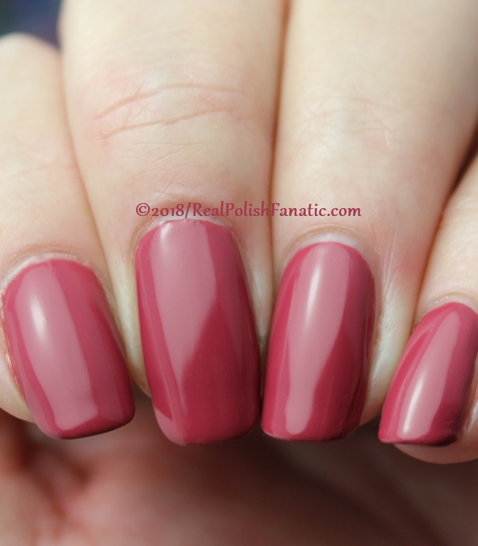 The Nail Bazaar - Cosmic Cranberry (20)