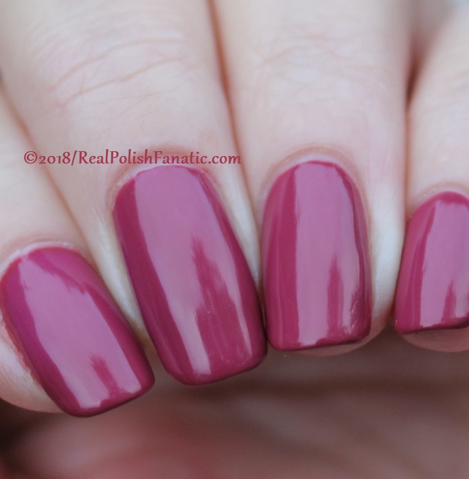 The Nail Bazaar - Cosmic Cranberry (25)