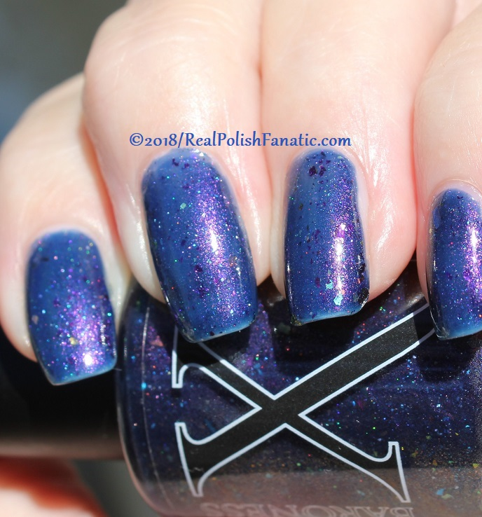 Baroness X Polish - In A Galaxy Purr, Purr Away -- November 2017 Cats In Space Box (41)