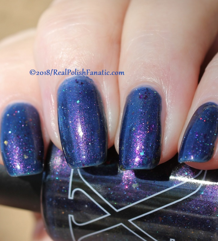 Baroness X Polish - In A Galaxy Purr, Purr Away -- November 2017 Cats In Space Box (48)