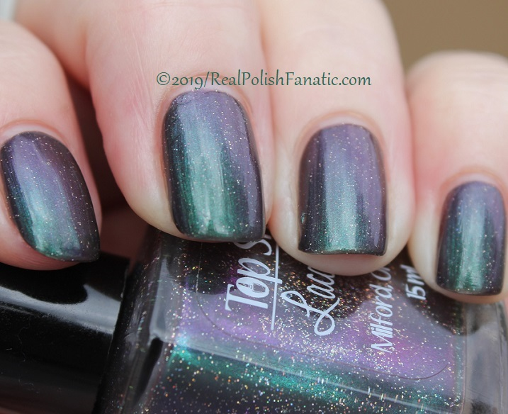 Top Shelf Lacquer - Resistant To Magic -- December 2018 Polish Pickup Enchanted Forest (19)
