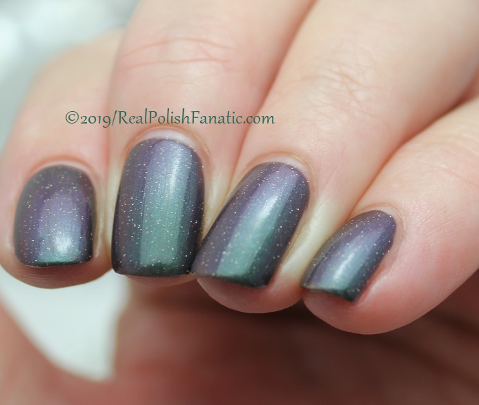 Top Shelf Lacquer - Resistant To Magic -- December 2018 Polish Pickup Enchanted Forest (9)