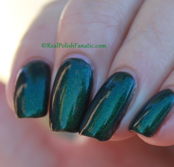 Bees Knees Hide And Seek FTW over Nail Pattern Boldness The Headless Horseman (23)